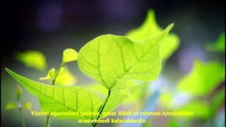 İMRAN-(İMRÂN)-SURESİ-Ebubekir Şatiri (Abu Bakr Al Shatri)