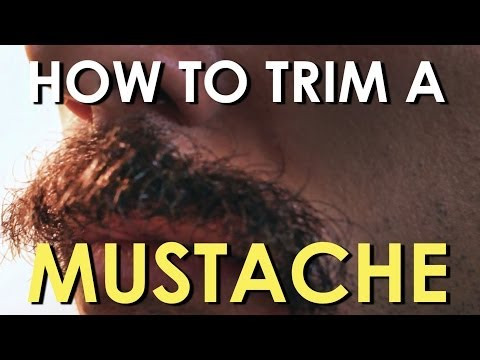 How To Trim Your Mustache | The Art Of Manliness