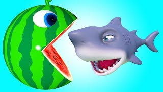 Video Pacman Watermelon roll around river meets a shark he eats fruits and found surprise toys on farm MP3, 3GP, MP4, WEBM, AVI, FLV April 2019