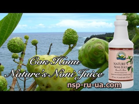 Сок Нони NSP из плодов моринды - отзывы, полезные свойства