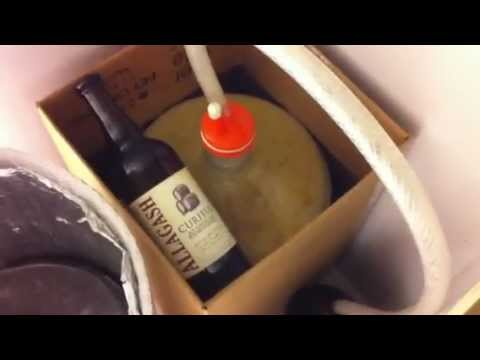 BoH brew – Curieux clone primary 18hrs