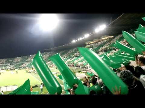 Recibimiento Hinchada Verdolaga ante Rosario Central - Los del Sur - Atlético Nacional