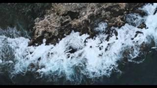 Видеосъемка с квадрокоптера (дрона) в парке