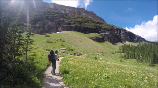 Video Grizzly Bears and Packrafting in Glacier National Park MP3, 3GP, MP4, WEBM, AVI, FLV Oktober 2017