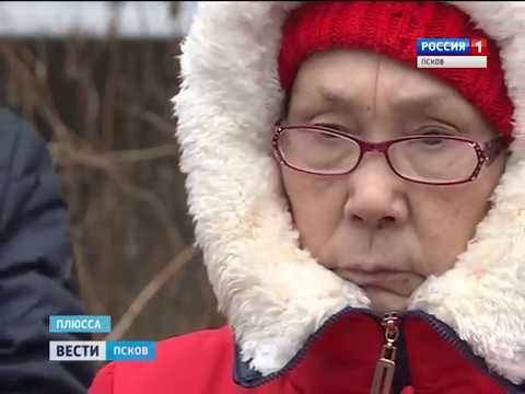 Вести-Псков 11.01.2017 17-20 (видео)