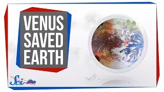 How Studying Venus Saved Earth by SciShow Space