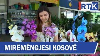 Mirëmëngjesi Kosovë - Kronikë - Kujdesi Për Lulet 15.06.2019