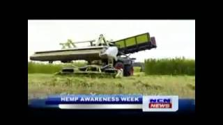 NCN Guyana - GHA Hemp Interview