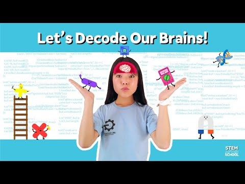 How do our brains work? [Brain Science! #1]