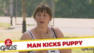 Man Soccer-Kicks Puppy