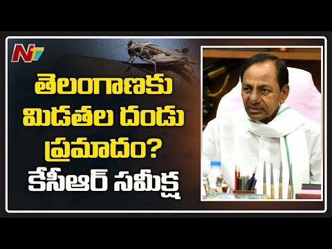 Telangana Govt On High Alert : CM KCR Meeting Over Locust Attack