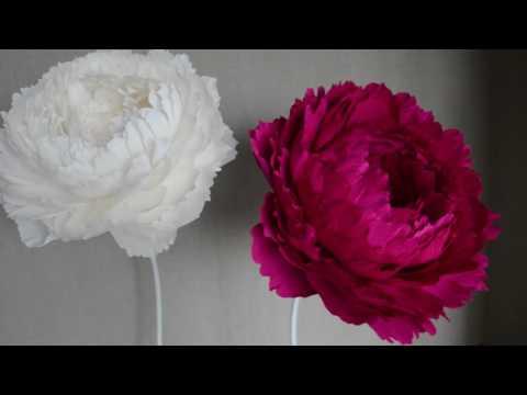 Цветы пионы из гофрированной бумаги большие 39