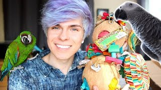 Unboxing Bird Toys + Cage Redecorating 🐦 by Tyler Rugge