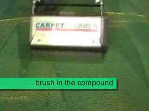 carpet- dry- cleaning