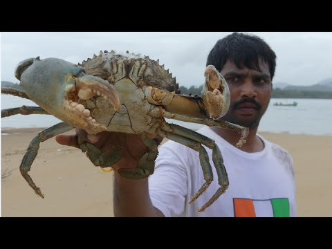 BIG CRAB CAUGHT AND COOKING IN GOA BACKWATER | CRAB CURRY  MAKING | SEAFOOD RECIPES Street Food