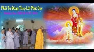 Bài Giảng: Phải Tu Đúng Như Lời Phật Dạy - TT Thích Giác Hóa