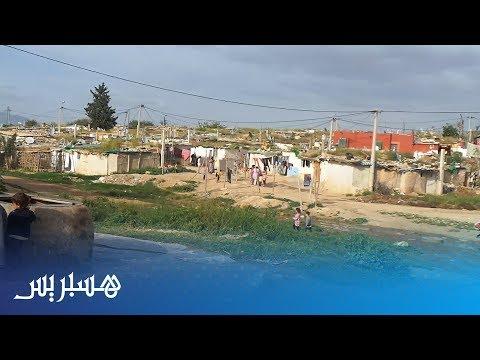 العرب اليوم - الحشرات تهاجم أكواخ قصديرية