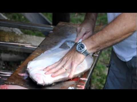 How to Clean a Flounder