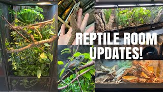 Upgrades, Changes And Makeovers In My Reptile Room! by Emma Lynne Sampson