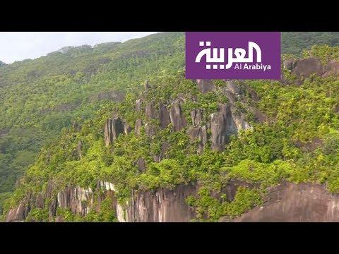العرب اليوم - تعرف على حديقة التوابل في جزر السيشل