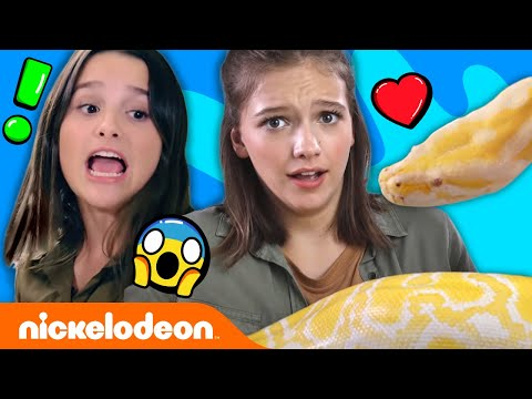 Annie LeBlanc & Jayden Bartels Wrestle a Giant Snake! 🐍 Expert Attempters: Ep. 1 | Nick