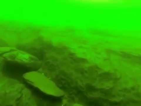 Mergulho com ScubaMinas no Rio Grande - São José da Barra - MG - Usina de Furnas