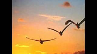 Download Lagu Piazzolla - Agri - Los pájaros perdidos Mp3