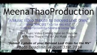 Qee Txoj Sia Rau Koj-Meena Thao (A Tribute To Beloved Lost Ones)