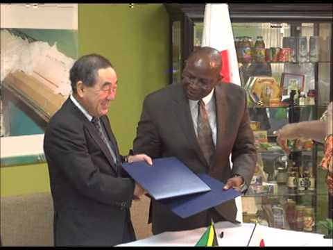 Japan boosts Jamaica's Sea Island Cotton industry with US$106,000 grant - The Owen James Report - February 18, 2014