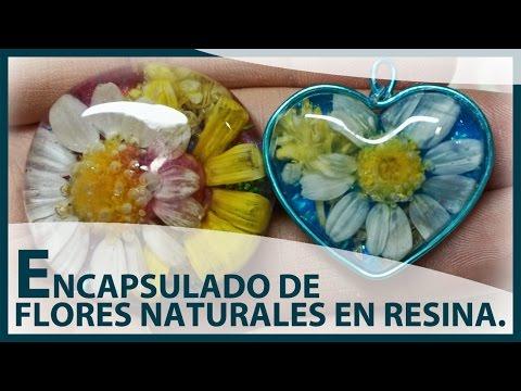 diy - ciondoli con fiori naturali incapsulati