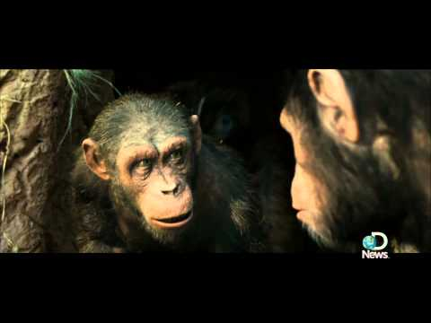 Rise of the Planet of the Apes - Playing a chimp is more than just dragging your knuckles, especially if the primate is leading a revolution. Actor Andy Serkis talks to Jorge Ribas about wha...