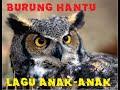 BURUNG HANTU.3gp