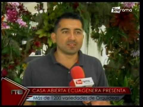 Casa abierta Ecuagenera presenta más de 1200 variedades de orquídeas