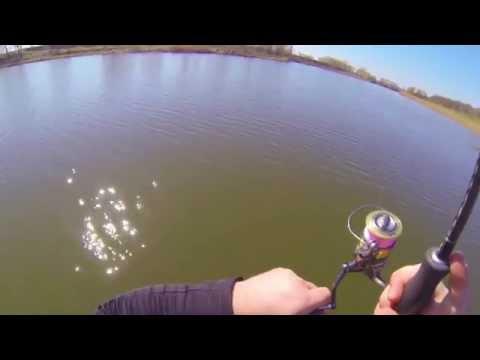 как ловить судака на реке белой