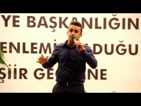Sakarya Türküsü - Ahmet Emin Zengin