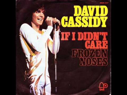 Tekst piosenki David Cassidy - If I Didn't Care po polsku