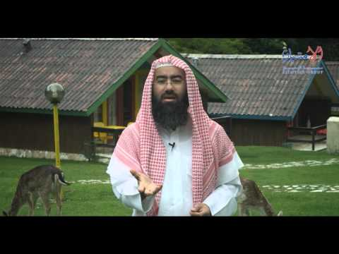مشاهد - الحلقة الثانية من برنامج مشاهد 3 بعنوان الشوق إلى الجنة من تقديم الشيخ الدكتور نبيل العوضي ، ومن اعداد الأستاذ مشاري العنزي.