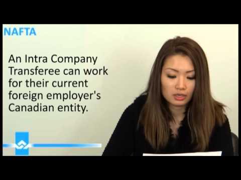 NAFTA Work Permit Management Consultant Video