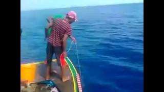 Do you know how to catch shark? see this video