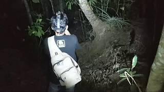 Video Jurang Sarang Wewe Wt Andreas MP3, 3GP, MP4, WEBM, AVI, FLV September 2019