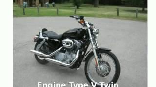 5. 2007 Harley-Davidson Sportster 883 Custom - Walkaround