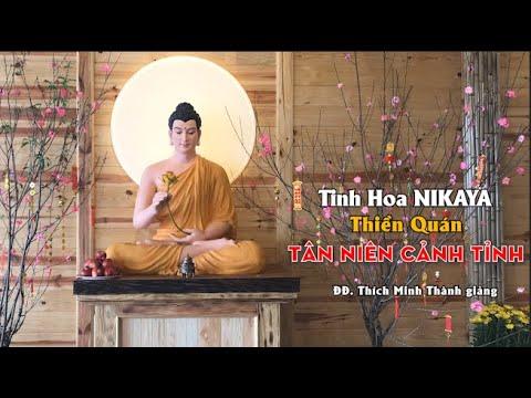 Tinh Hoa NIKAYA - Thiền Quán – Tân Niên Cảnh Tỉnh