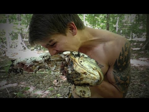 Surviving Off Carp - Bowfishing, Cleaning And Cooking!