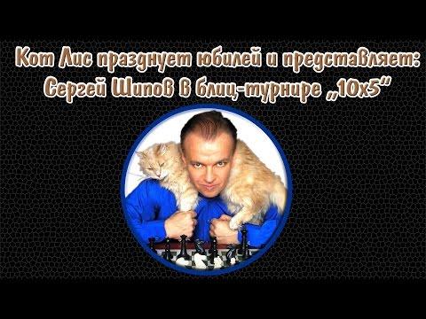 🐱 Кот и шахматы. Сергей Шипов играет в блиц! (видео)