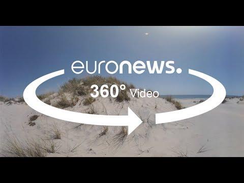 Ντονιάνα: Η ερημοποίηση απειλεί τον ισπανικό υγροβιότοπο
