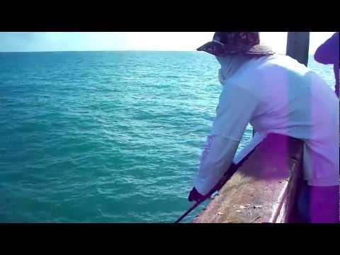 Spanish Mackerel on artificials – Dania Pier, FL 2012