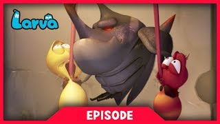 Swinging is funny, but also dangerous! Red Shows us how dangerous could be the swing. Oh, poor Red! ⏩⏩⏩ SUBSCRIBE to LARVA: http://www.youtube.com/channel/UC...