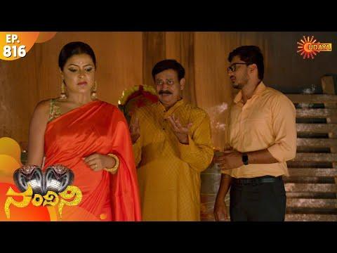 Nandini - Episode 816 | 10th Dec 19 | Udaya TV Serial | Kannada Serial