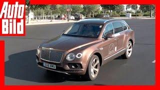 Bentley Bentayga Tour - Videotagebuch Etappe 13 by Auto Bild