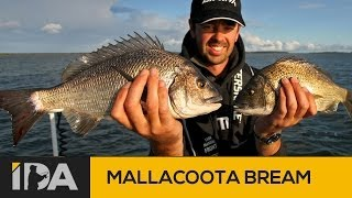 Mallacoota Australia  city pictures gallery : Gippsland Fishing - Mallacoota Black Bream on Vibes